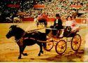 Oportunidad coleccionistas - faeton pony - En Córdoba